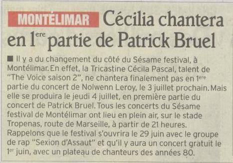 1ère partie de Patrick Bruel | Montélimar Agglo Festival 2014 | Scoop.it