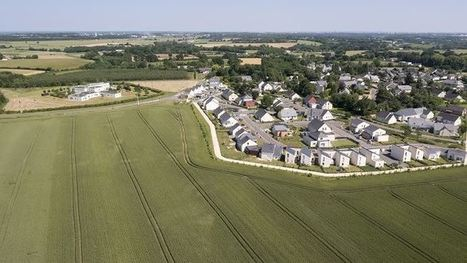 Marché foncier agricole 2015 : la FNSafer réclame d'urgence une plus forte régulation - Terrenet   Le Fil @gricole   Scoop.it