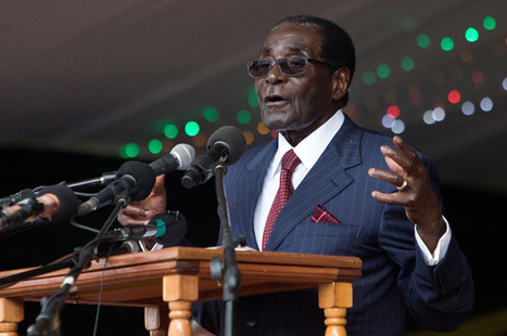 Zimbabwe will sink into horror and depravity unless Mugabe quits now | Purrfect Pets | Scoop.it