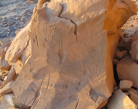 Le seul exemple connu d'araignées en art rupestre reste un mystère archéologique | Les découvertes archéologiques | Aux origines | Scoop.it