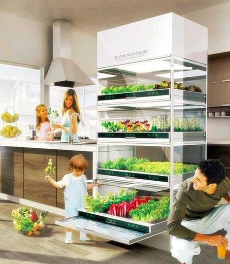 Électroménager du futur : Cultiver des fines herbe... - Future Shop | Espaces Zen | Scoop.it