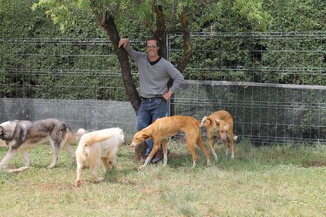 Cuando tu hijo es tu perro | Personas y Animales | Scoop.it