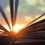 Divine Terre | L'Art et la Culture plus forts que les conflits | Divine Terre, le journal des bonnes nouvelles | Scoop.it
