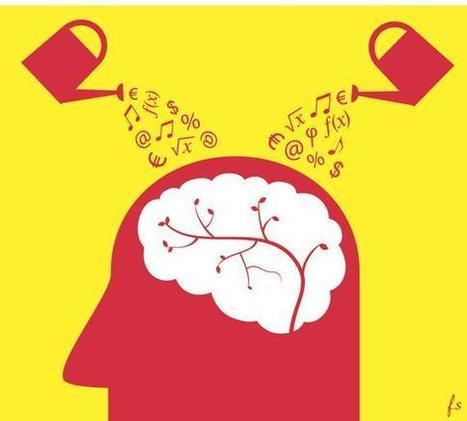 Ecoles de management : la révolution des programmes est en cours | Formation | Scoop.it