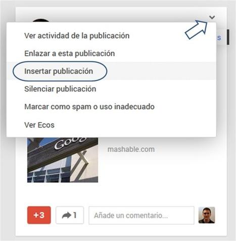 Ya puedes insertar publicaciones de Google Plus en tu blog   José Facchin   Scoop.it