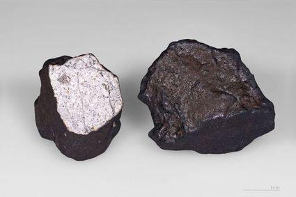 Fin des dinosaures : l'astéroïde Baptistina serait innocent   Aux origines   Scoop.it