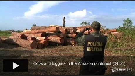 Cops and loggers in the Amazon rainforest | The Knowledge Effect | Rainforest EXPLORER:  News & Notes | Scoop.it