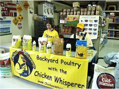 Backyard Poultry with the Chicken Whisperer | Annie Haven | Haven Brand | Scoop.it