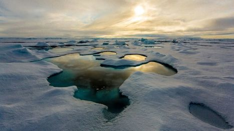 Melt ponds suggest no Arctic sea-ice record this year - BBC News | The Arctic Circle | Scoop.it