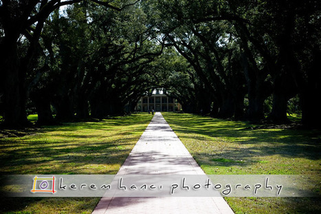 Friday Photography Blog by Kerem Hanci: Oak Alley Plantation | Oak Alley Plantation: Things to see! | Scoop.it