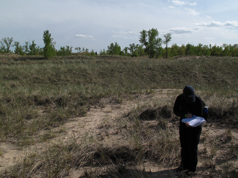 Field Investigations   Geography Fieldwork   Scoop.it