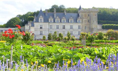 Les jardins de Villandry – Photos d'une étape obligée des châteaux de la Loire | Châteaux de la Loire et Jardins de France | Scoop.it