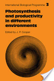 Photosynthesis and Productivity in Different Environments | Mangrove Swamp | Scoop.it