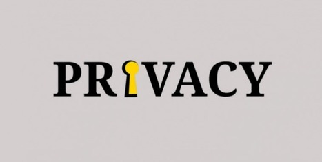 German Minister Proposes Data Protection Law Aimed at Limiting Privacy Rights | ViaVirtuosa Blog | Scoop.it
