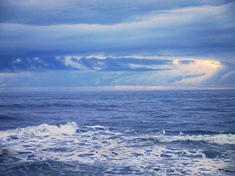 Facebook y Google construirán un cable submarino en el Pacífico • ENTER.CO   Bits on   Scoop.it