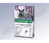 However with the addition of Frontline Plus for Cats | Health | Scoop.it