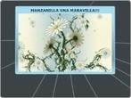 MANZANILLA MARAVILLA - Mind Map | LA MANZANILLA UNA MARAVILLA.(Matricaria chamomilla L. ) | Scoop.it