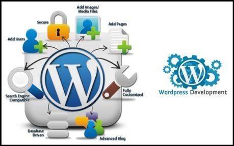 Finalize the Deal with WordPress Development Agency | Digital Marketing | Scoop.it