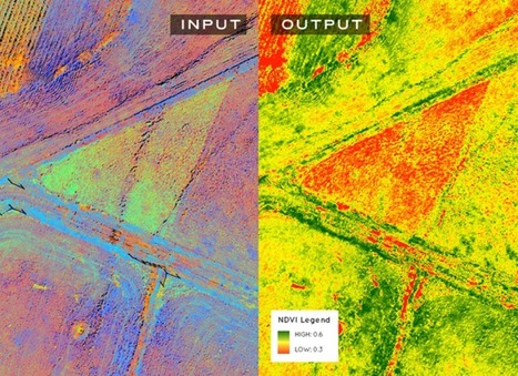 Understanding your Aerial Data: Normalized Difference Vegetation Index NDVI - Geoawesomeness | Everything is related to everything else | Scoop.it