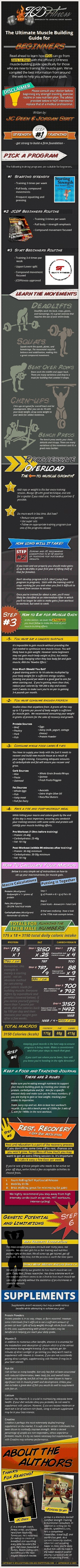 The Ultimate Muscle Building Guide for Beginners[INFOGRAPHIC] | top 10 | Scoop.it