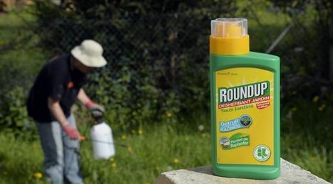 Pesticides : le risque cancérogène du glyphosate jugé « peu probable » - Ouest France | Agriculture en Pays de la Loire | Scoop.it