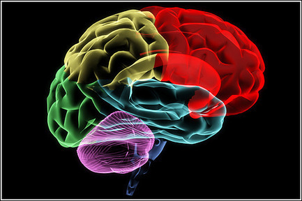 What You're About To Learn About Your Brain Changes Everything. #5 Is Scary Though.   Brain Bonanza   Scoop.it