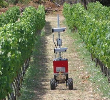 Viticulture de précision : premier essai réussi pour Vinbot | Le Vin et + encore | Scoop.it