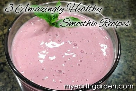 3 Delicious and Amazingly Healthy Smoothie Recipes   Michael Nolan's My Earth Garden   Anti-Agein   Scoop.it