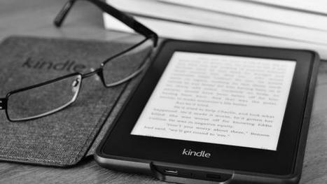 e-Book Piracy Suffers a Serious Blow | book publishing | Scoop.it