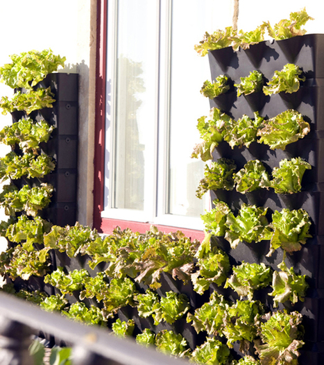 Mini Vertical Garden for Balcony, Patio, or Kitchen | Urban Gardens | Unlimited Thinking For Limited Spaces | Urban Gardens | iMobileHomes - Interior Gardens for Air Quality | Scoop.it