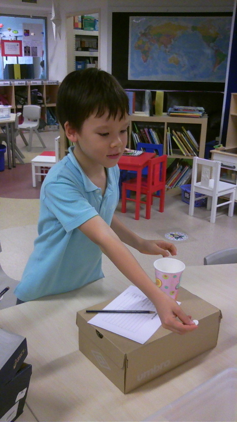It's about giving from your heart   UWCSEA   International school in Singapore   Grade 5 Lend a Hand- Service and Action   Scoop.it