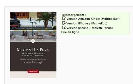 Meydan | La Place 2 | davidbosman.fr | Publie.net | Scoop.it