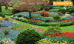 7 Awesome Gardens From Around the World   EcoWatch   Scoop.it
