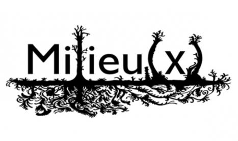 Projet - Revue Milieu(x) | haricot | Sociofinancement | Scoop.it