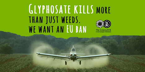EU Delays Approval of Glyphosate, Again | OrganicNews | Scoop.it