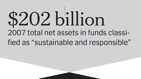 The Surge in Investing by Conscience | Social Business | Scoop.it