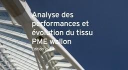 Des PME wallonnes en croissance mais trop peu capitalisées | MEUSINVEST - PME | Scoop.it
