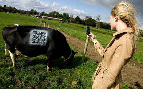 Les QRcodes ont eu la peau des vaches | QR-Code and its applications | Scoop.it