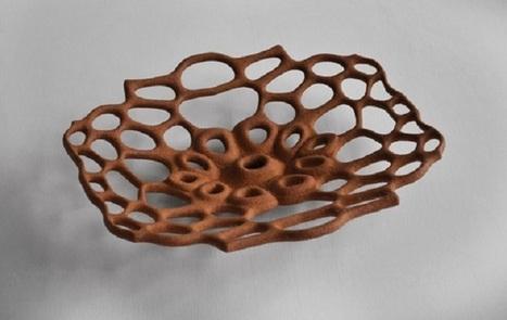 Crean impresiones 3D con materiales biodegradables - VeoVerde   Impresiones Digitales en 3D   Scoop.it