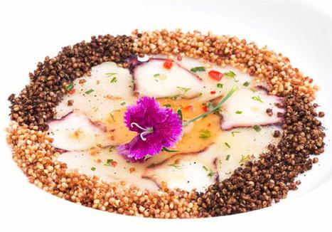 Recetario Gourmet de la Quinua | Cum Panem | Scoop.it