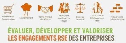 Mise en œuvre de la RSE dans les entreprises françaises | Stratégies RSE | Scoop.it