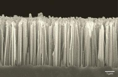 A nanotechnology catalyst with a million uses | Impacto de la Nanociencia en la Química | Scoop.it
