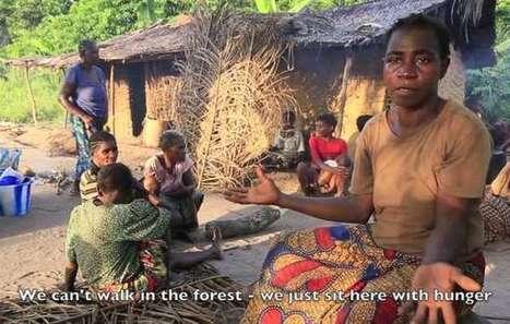 Journée mondiale de la vie sauvage : les tribus dénoncent les mauvais traitements au nom de la conservation   Environnement et développement durable, mode de vie soutenable   Scoop.it