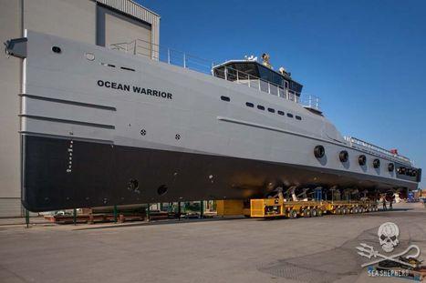 Sea Shepherd lance son nouveau navire | Ocean's news | Scoop.it