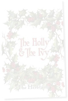 Menu for the Holly & the Ivy | Annie Haven | Haven Brand | Scoop.it
