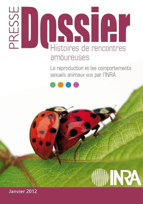 Reproduction animale et comportements sexuels animaux | INRA | EntomoNews | Scoop.it