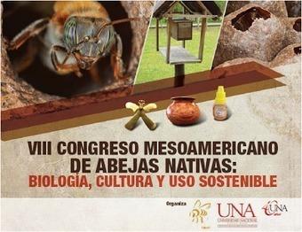 VIII CONGRESO MESOAMERICANO DE ABEJAS NATIVAS | Bichos en Clase | Scoop.it