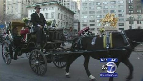 Liam Neeson tours stables amid New York carriage horse debate | optioneerJM | Scoop.it