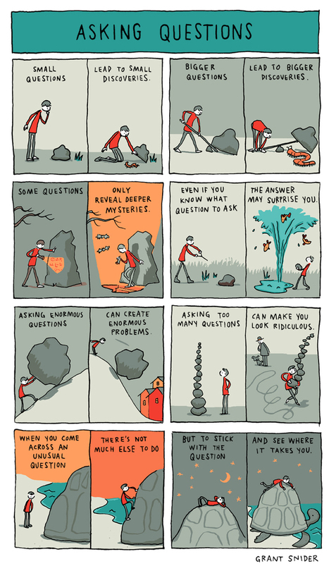 INCIDENTAL COMICS: Asking Questions   All About Coaching   Scoop.it