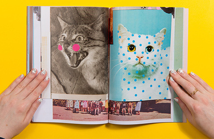 It's Nice That : Publication: FINALLY! A magazine made specifically for and by cat lovers | Matmi Staff finds... | Scoop.it